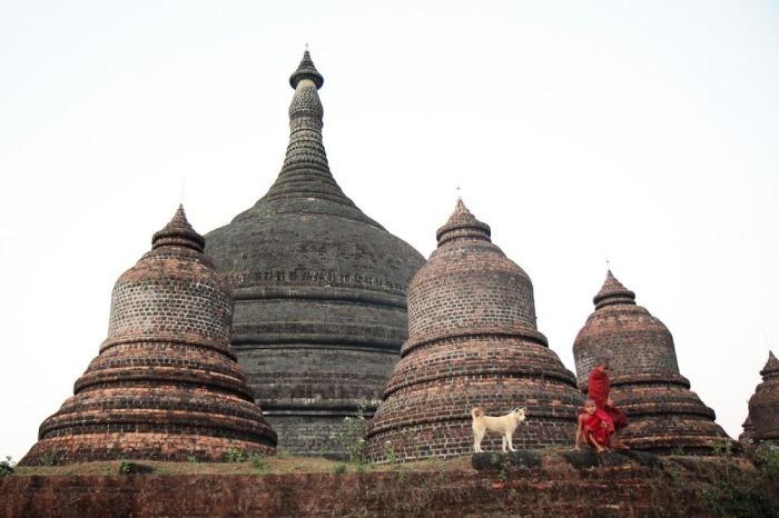 Монахи и собака на фоне храма в Мраук-У.