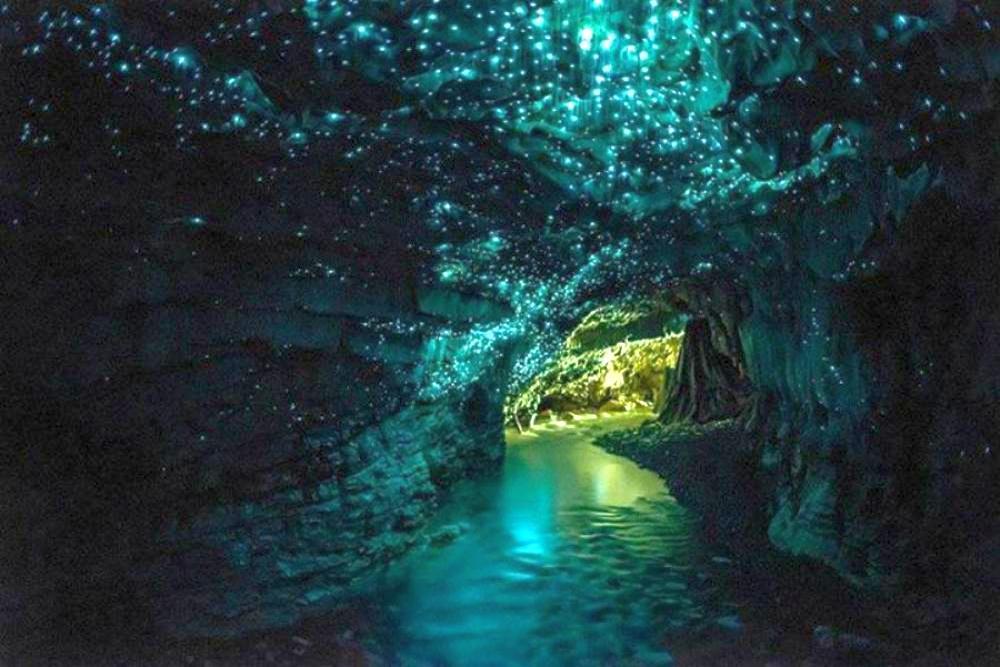 Пещеры Вайтомо, Новая Зеландия